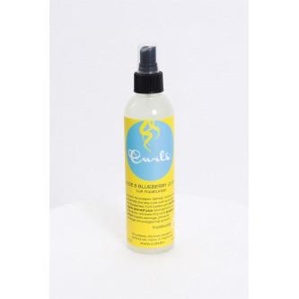 Curls - Aloe & Blueberry Juice Curl Moisturizer (8oz)